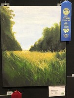 Art Awards at the SC State Fair!